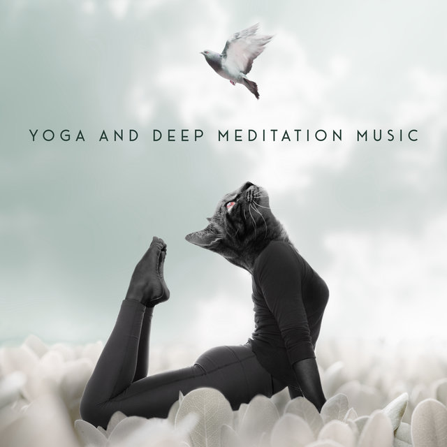Yoga and Deep Meditation Music – Spiritual New Age Collection for Body and Mind Training, Harmony, Serenity and Balance, Chakra Flow, Reflections