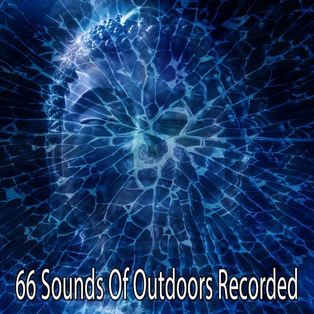 66 Sounds of Outdoors Recorded