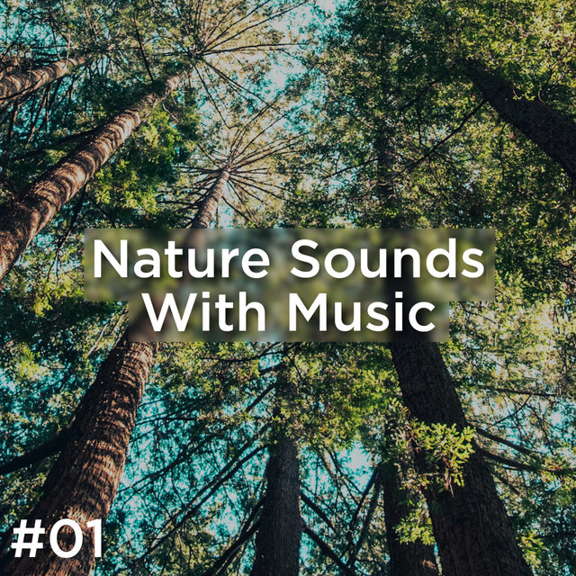 #01 Nature Sounds With Music