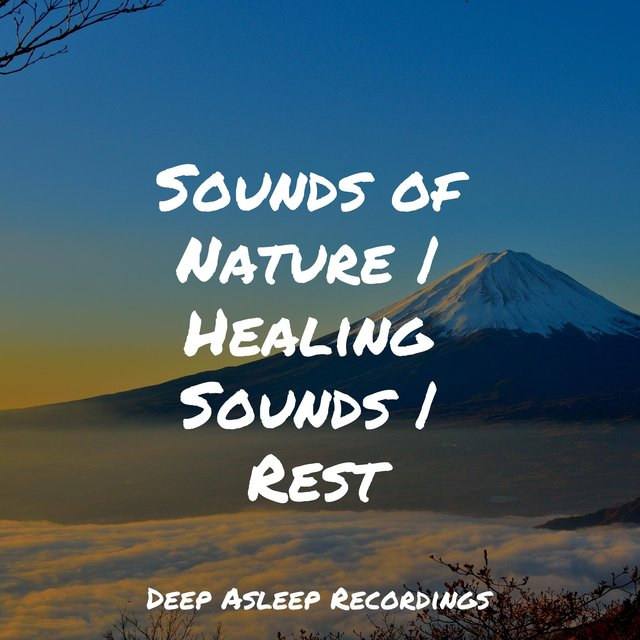 Sounds of Nature | Healing Sounds | Rest