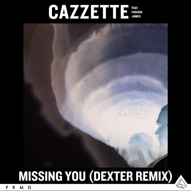 Missing You (feat. Parson James) [Dexter Remix]