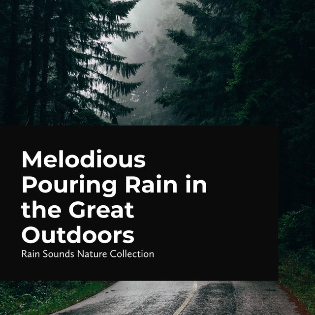 Melodious Pouring Rain in the Great Outdoors