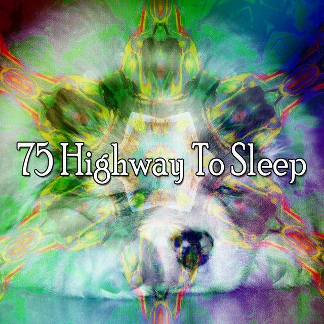 75 Highway to Sle - EP