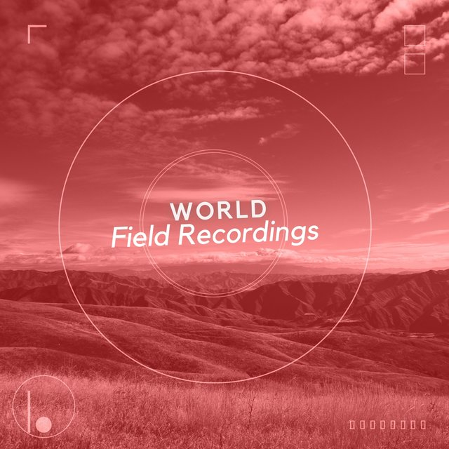 Soothing Natural World Field Recordings