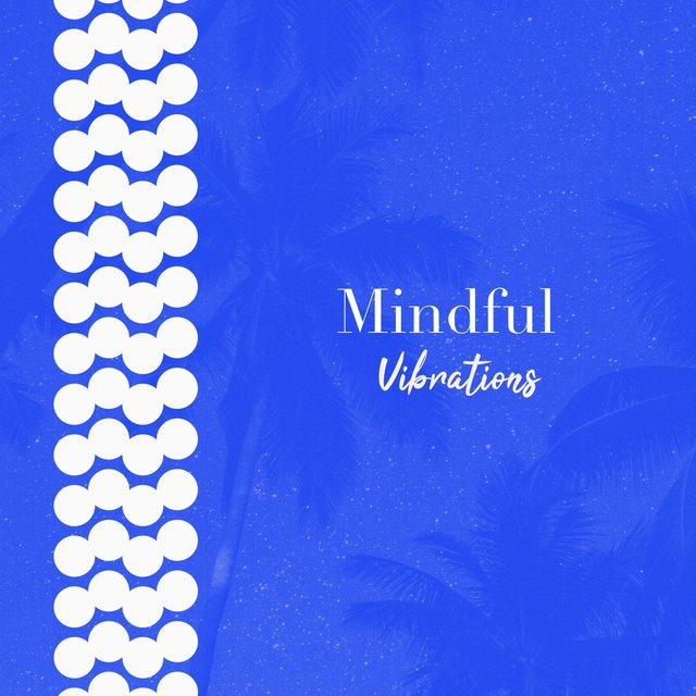 # 1 Album: Mindful Vibrations