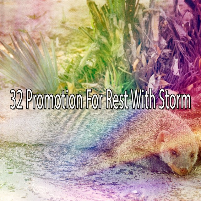 32 Promotion for Rest with Storm