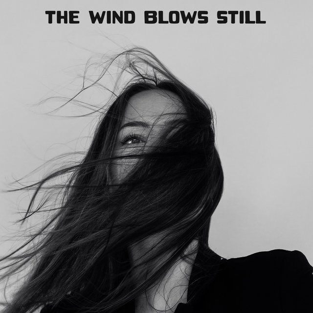 The Wind Blows Still