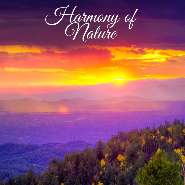 Harmony of Nature