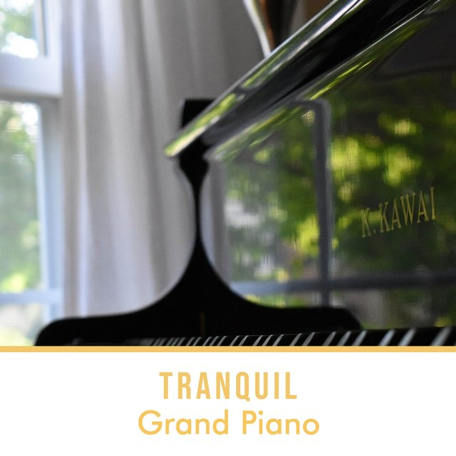 Tranquil Background Grand Piano Tracks