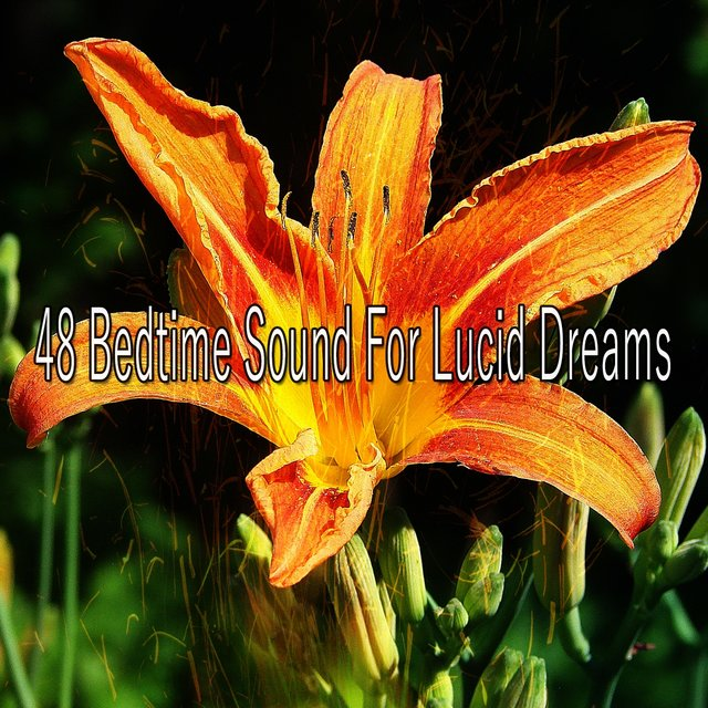 48 Bedtime Sound for Lucid Dreams