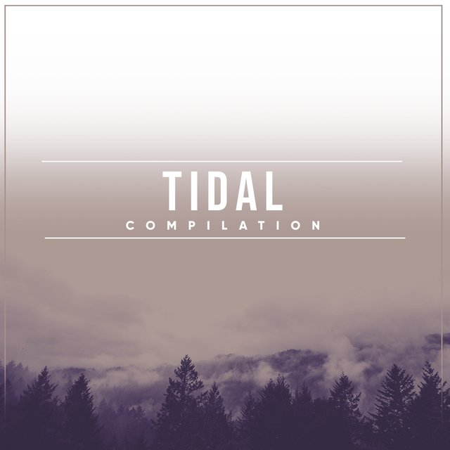2020 Calming Tidal Compilation