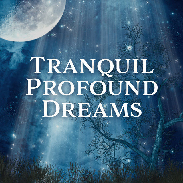 Tranquil Profound Dreams – New Age Sounds 2019 Perfect for Restful Sleep, Relax Songs, Feel Better, Easy Sleep