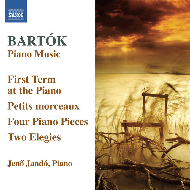 Bartók: Piano Music, Vol. 6