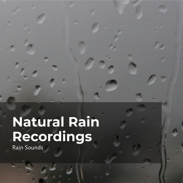 Natural Rain Recordings