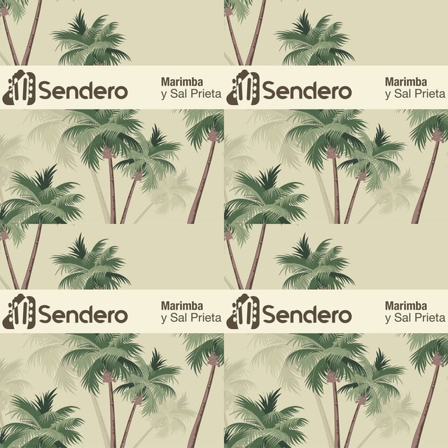 Cover art for album Sonido Tropical by User