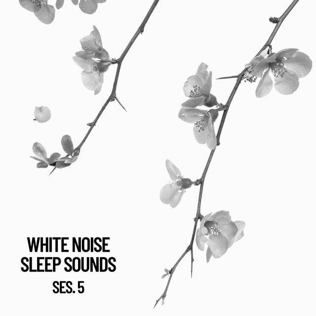 White Noise Sleep Sounds Session 5