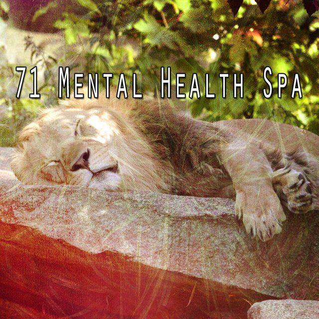 71 Mental Health Spa