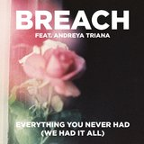 Everything You Never Had (We Had It All) [feat. Andreya Triana]
