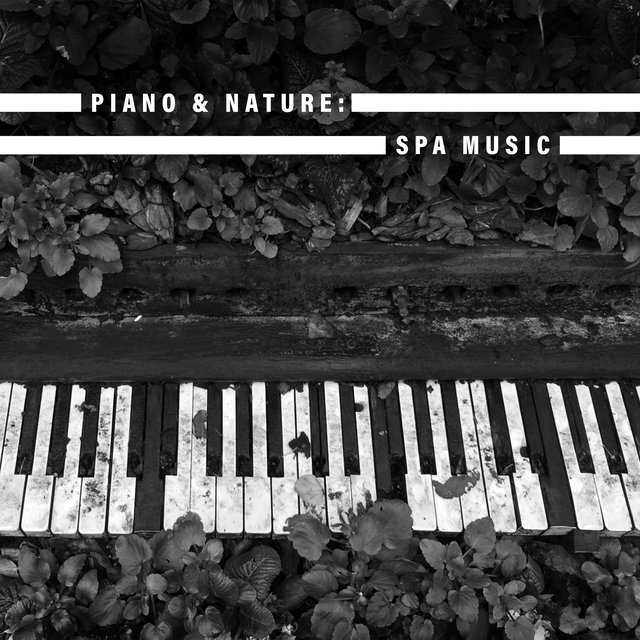 Piano & Nature: Spa Music - Deeply Relaxing Nature Sounds Collection Dedicated for Spa & Wellness Salons, Hydrotherapy, Beauty Concept, Massage Sessions, Relaxation Breeze