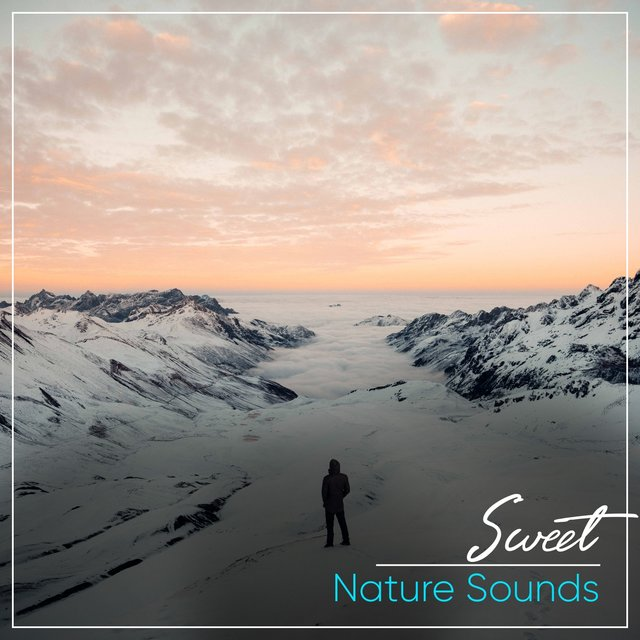 # Sweet Nature Sounds