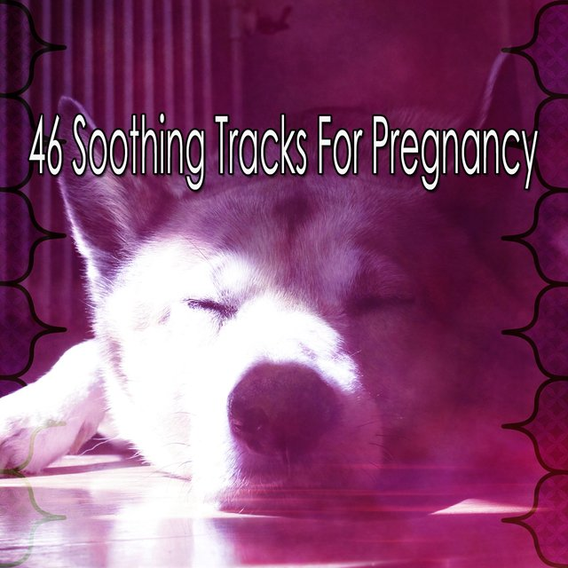 46 Soothing Tracks for Pregnancy