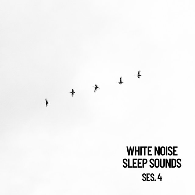 White Noise Sleep Sounds Session 4