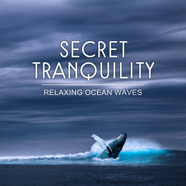 Secret Tranquility: Relaxing Ocean Waves, Seagulls, Whale and Ambient Music for Well