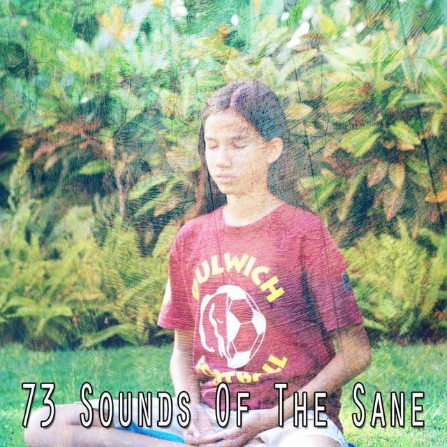 73 Sounds of the Sane