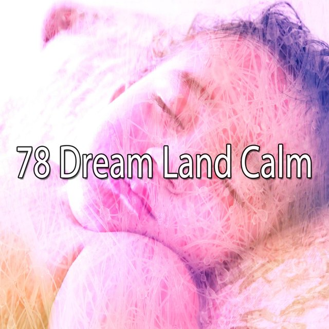 78 Dream Land Calm