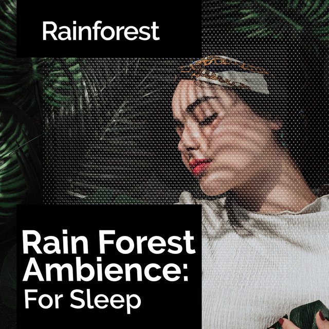 Rain Forest Ambience: For Sleep