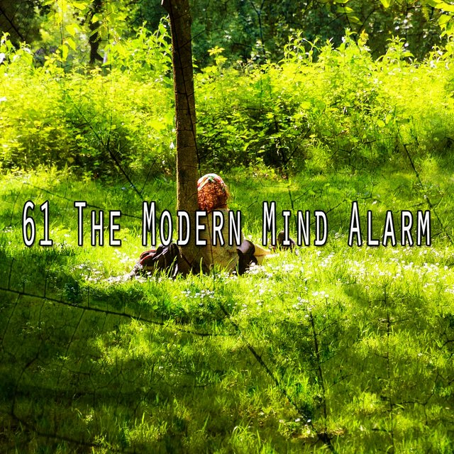 61 The Modern Mind Alarm