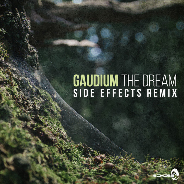 The Dream (Side Effects Remix)