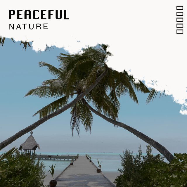 # 1 Album: Peaceful Nature