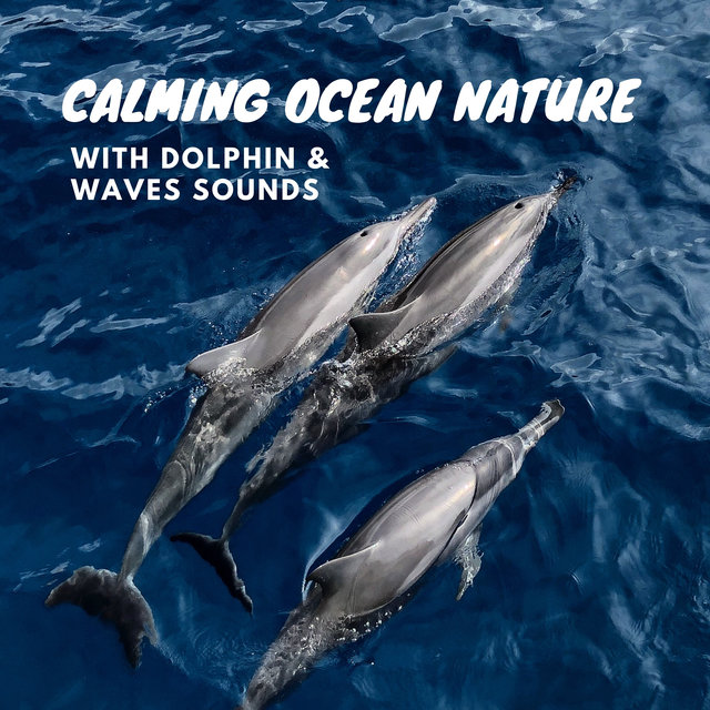 Calming Ocean Nature with Dolphin & Waves Sounds