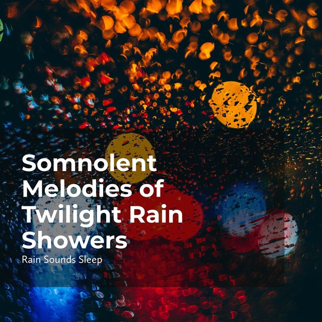 Somnolent Melodies of Twilight Rain Showers