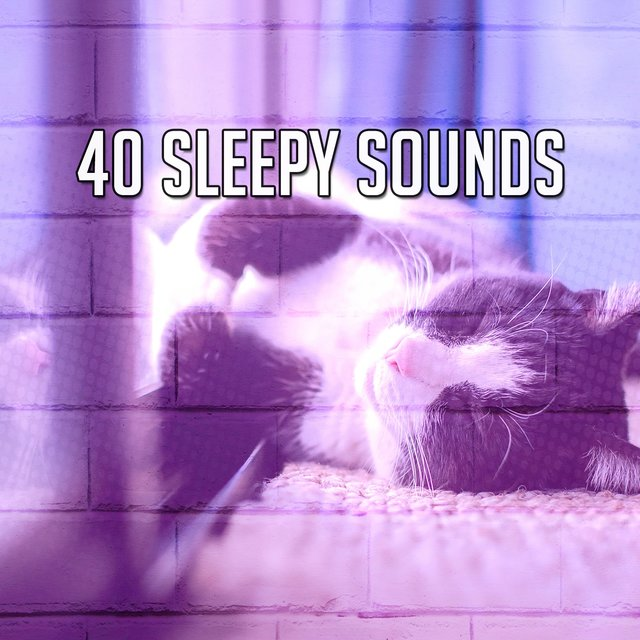 40 Sleepy Sounds