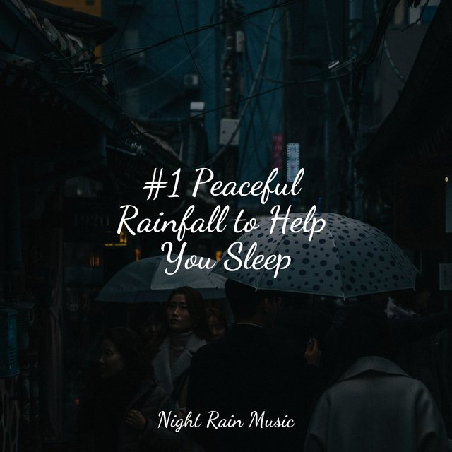 #1 Peaceful Rainfall to Help You Sleep