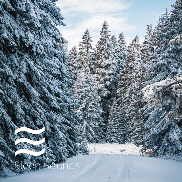 White Noise Sleep Therapy Loopable Shushers and Relaxing Melody Winter Pack