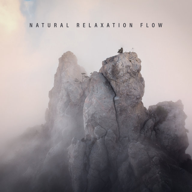 Natural Relaxation Flow - 1 Hour of Beautiful Nature Sounds Collection Perfect for Rest, Sleep and Meditation, New Age Relaxing Vibes, Body, Mind & Soul, Calm Nerves