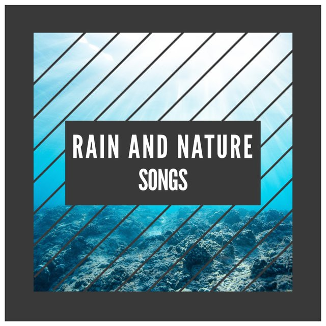 Looping International Rain and Nature Songs