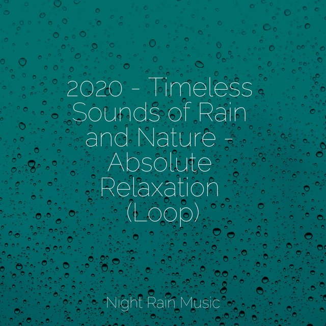 2020 - Timeless Sounds of Rain and Nature - Absolute Relaxation (Loop)