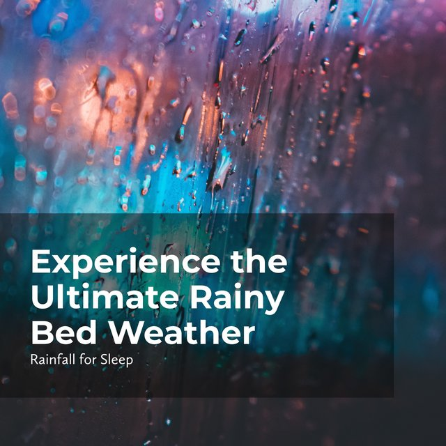 Experience the Ultimate Rainy Bed Weather