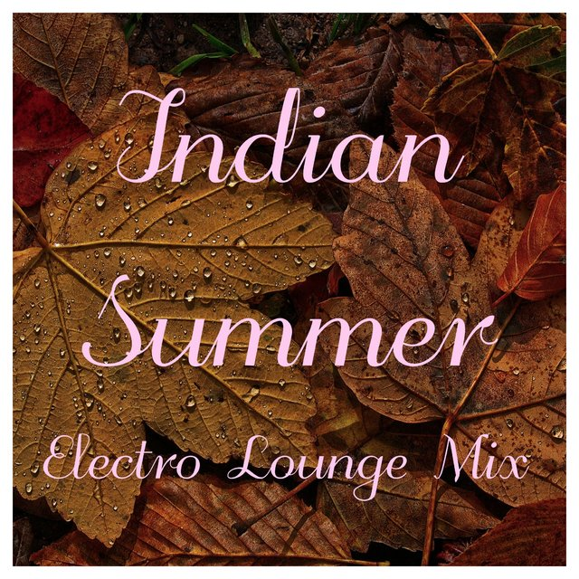 Indian Summer Electro Lounge Mix