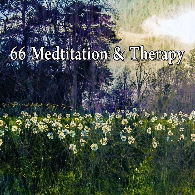 66 Medtitation & Therapy