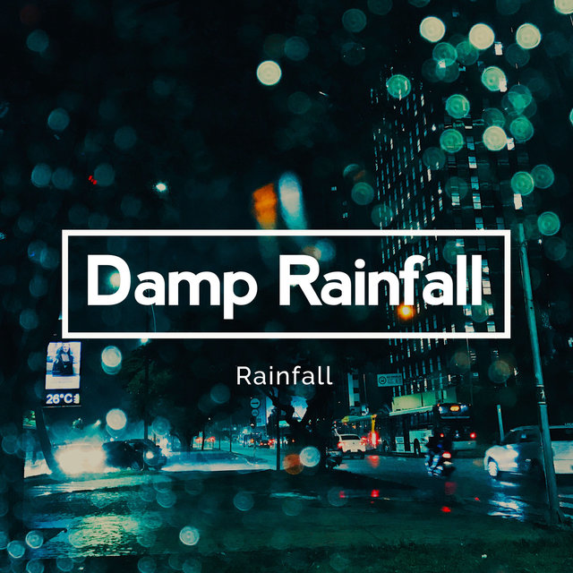 Damp Rainfall