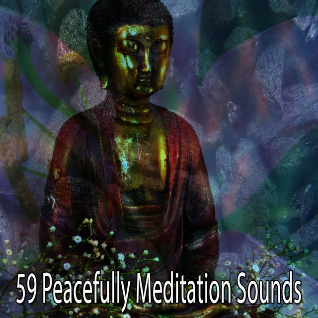 59 Peacefully Meditation Sounds
