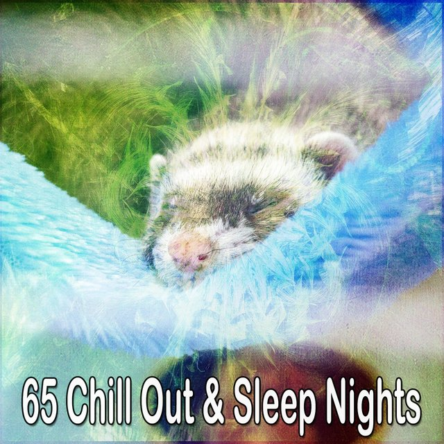 65 Chill out & Sleep Nights