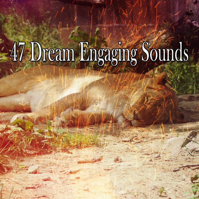 47 Dream Engaging Sounds
