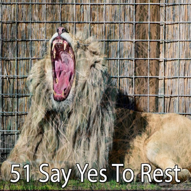 51 Say Yes to Rest