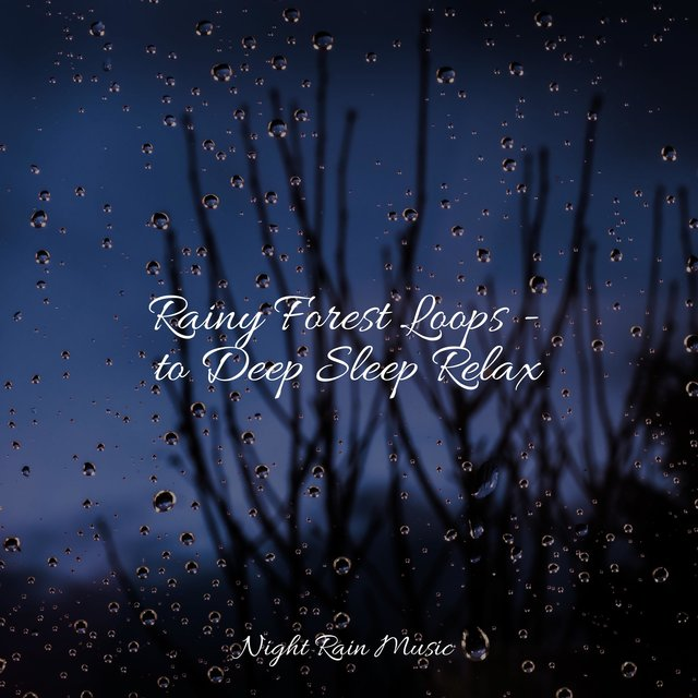 Rainy Forest Loops - to Deep Sleep Relax